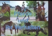 Evangelische-Oberschule-Schneeberg-Abschlussarbeiten-5